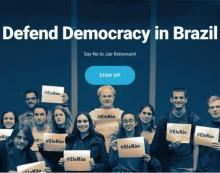 Screen grab of Defend Democracy in Brazil's petition